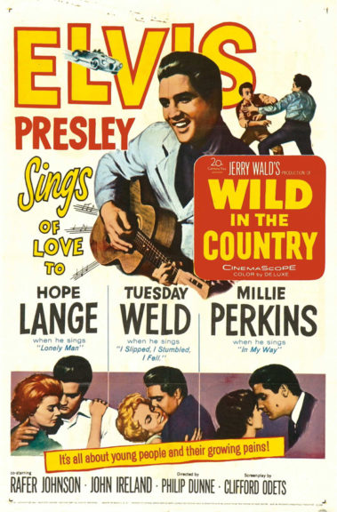 Filmplakat Wild In The Country 1961